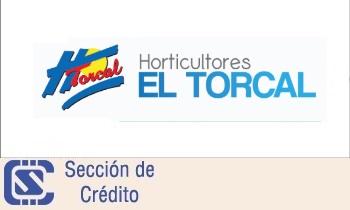 Banca electrónica       Horticultores el Torcal S.Coop.